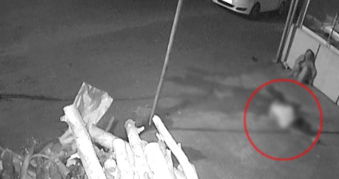 Adana'da 1 Kadının Öldüğü Bar Cinayetinin Görüntüleri Ortaya Çıktı