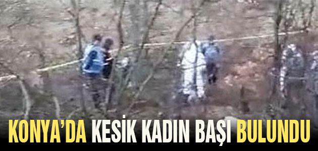 Konya'da kesik kadın başı bulundu